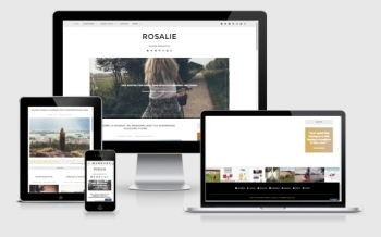 Best WordPress Themes: Rosalie